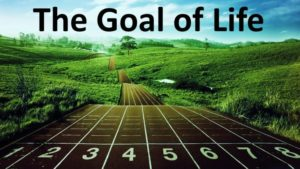 Tujuan Hidup Anda, pandangan hidup, mengapa mereka terlahir ke dunia